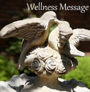 wellness-msg